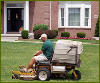 Lawn & Grounds Maintenance